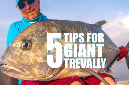 5 TIPS FOR GIANT TREVALLY